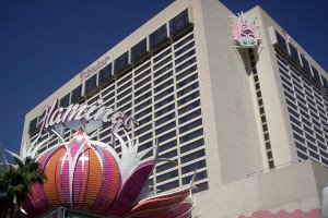 Flamingo Hotel Casino Vegas